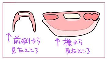 ireba2.jpg
