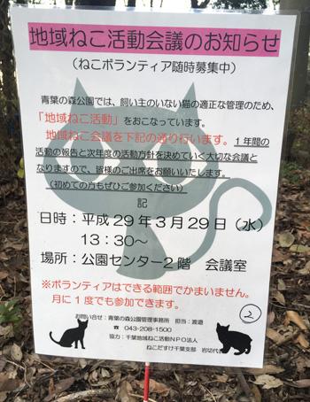 yoso8.jpg