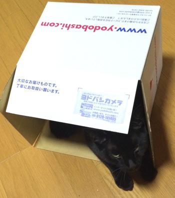 box3.jpg